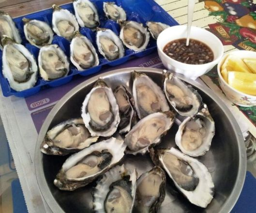 Oyster at home