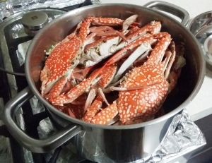 Crabs in a POT